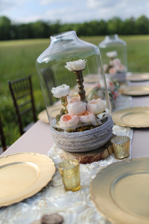A david austin roses wedding decor to adore for Decor to adore