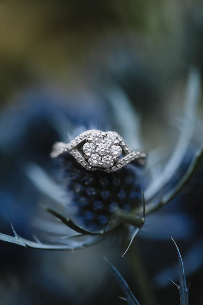 Aldridge Gardens Ring