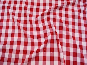 Gingham-Red1
